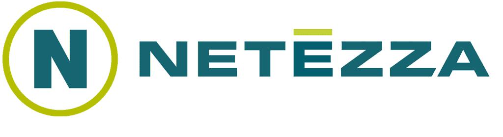Netezza RPA Automation